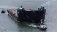 AMT - AMT Trader (CapMarcel) Tags: amt trader rotterdam harbour haven ponton pontoon