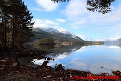 Hornindalsvatnet - Holmoyane (soyouz) Tags: geo:lat=6194547600 geo:lon=646937225 geotagged holmyane nor norvge sognogfjordane lac montagne neige paysage hornindalsvatnet norvegela