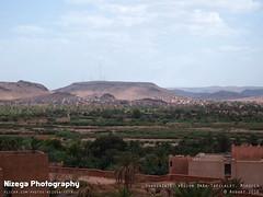 Ouarzazate, rgion Dra-Tafilalet (nizega) Tags: morocco maroc ouarzazarte donkey city desert road kasbah