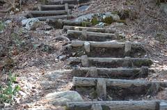 steps in the mountain (Hayashina) Tags: staircase mountain nature texture shirakawago japan