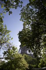 Tour Eiffel (y_phog) Tags: paris france canon toureiffel    ef24105mmf4lisusm eos5dmarkii