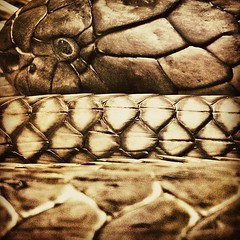 Cobra Coil (kcschiebel) Tags: blackandwhite bw eye sepia square reptile snake scales squareformat hefe day190 190366 iphoneography blono365 instagramapp uploaded:by=instagram