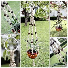 Macrame Plant Hanger- Natural Hemp- Caff Swirls (Macramaking- Natural Macrame Plant Hangers) Tags: summer plants brown plant green love coffee hippies garden beads office nc natural herbs gardening handmade character cottage northcarolina funky retro gift zen hanging espresso fengshui flowing organic chic cocoa boho planter groovy weddinggift knots weaving hang caff bohemian homedecor hanger macrame fibers stylish hemp ecofriendly conversationpiece hangingbasket shabbychic bohochic containergardening macram planthanger woodbowl woodbeads planthangers hangingplanter macramebeads decorativeknotting naturalhemp macrameplanthanger macramakin macramaking httpwwwetsycomshopmacramaking macramecord macrammacramaking macracord macrametechnique chinesecrownknots twistingsinnets macramehangingbasket macrameweaving macramelove