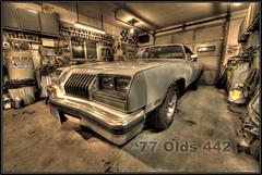 1977 Olds 442 (Point_Of_Light) Tags: white reflection classic car shop wisconsin work nikon garage workshop nikkor 1977 77 hdr olds oldsmobile d800 442 14mm 1424 flickrandroidapp:filter=none 9bracket