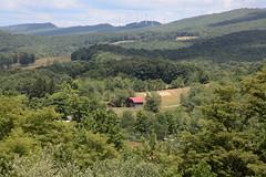 West Virginia 6-12-549 (Cwrazydog) Tags: westvirginia elkins grafton morantown thomas davis stewart philippi belington parsons blackwaterfalls