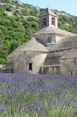 Do you like lavendar?  You've come to the right monestary. [EXPLORE] (WilliamMarlow) Tags: france nikon lavender explore cc creativecommons provence 2012 nikondslr explored nikond7000
