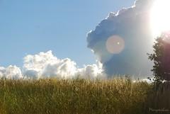 aprs la pluie (Imag'yin photos) Tags: nature bleu ciel nuages paysages