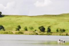 Give it a tilt (Ralph-Thompson) Tags: colour nature water scotland nikon edited candid freelance tiltlense d3000 ralphthompson