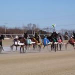 130 - race 8 - Past the Finish Line thumbnail