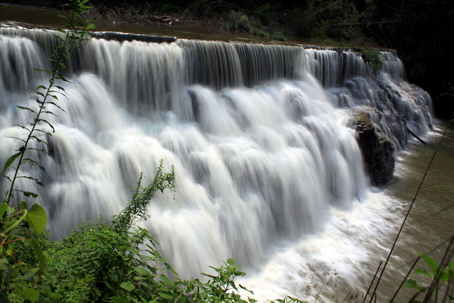 Waterloo Falls