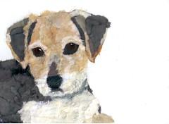 Chigirie Custom Pet Portrait Henrie (Robin Panzer Art Studio 33) Tags: original portrait rescue dog pet art robin animal collage paper studio rat 33 painted terrier torn custom panzer chigirie