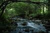 Stream (Sami A. Korhonen) Tags: nature water finland long exposure rapid ndx400 vftw