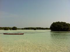 Exotic Beach