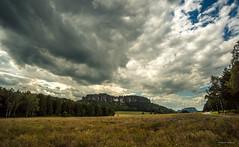 Schsische Schweiz - Blick zum Pfaffenstein (Pana53) Tags: photographedbypana53 pana53 wolken clouds knigstein wildblumen wiese berge wald himmel blau weis bunt farbig outdoor naturundlandschaftsfotografie naturfoto naturschutzgebiet naturfotografie schsischeschweiz sachsen lichtschatten nikon nikond810 pfaffenstein berg wolke landschaft feld hgel abhang gras pflanze