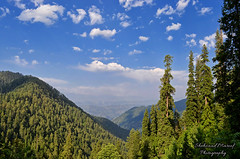 Beautiful Nathiagali (Shehzaad Maroof Khan) Tags: nathiagali valley khyberpakhtunkhwa nature picturepakistan beautifulpakistan green jungle forest galayat pakistan landscape
