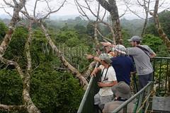 60071600 (wolfgangkaehler) Tags: 2016 southamerica southamerican ecuador ecuadorian latinamerica latinamerican rionapo rionapoecuador rionaporiver rainforest coca cocaecuador laselvalodge observationtower tower people person tourism tourist rainforestcanopy