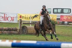 DSC00725_s (AndiP66) Tags: springen dubenmoos solothurn derby 2016 august pferd horse schweiz switzerland kantonsolothurn cantonsolothurn concours wettbewerb horsejumping springreiten pferdespringen equestrian sports pferdesport sport martinameyer grueb wolhusen luzern sony sonyalpha 77markii 77ii 77m2 a77ii alpha ilca77m2 slta77ii sony70400mm f456 sony70400mmf456gssmii sal70400g2 andreaspeters biberist ch