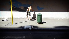 'It's hot in BXL!' - #Brussels #Belgium #hot #summer #dog #graffiti #streetart #visitbrussels #welovebrussels #BXL #hellhole #spraypaint #street (Ronald's Photo Factory - www.ronaldgiebel.eu) Tags: instagramapp square squareformat iphoneography uploaded:by=instagram brussels bruxelles brussel belgium streetart graffiti dog bulldog hot summer sun shadow wwwronaldgiebeleu urban street streetphotography photography