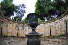 DSC_8166 (Thomas Cogley) Tags: hever castle kent vase urn greek thomas cogley thomascogley