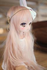 A little bunny. (lightlybattered) Tags: mdd custom modded repaint mini dollfie dream volks ddh01 shiro no game life