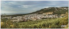 (seb@foto) Tags: paisaje montaas pueblo panormica verano summer olivos jan andalucia espaa spain pueblos world natura natural naturaleza sky cielo flickr canon eos sebafoto22