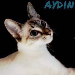 Aydin (Seal Tabby Point Siamese) (moo_baby) Tags: cat aydin sealtabbypointsiamese