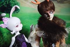 Pan and Loonette (lauradavison) Tags: bjd abjd resin doll sd male ringdoll twilight pan full set tan fantasy land landscape cerisedolls lillycat loonette bunny rabbit