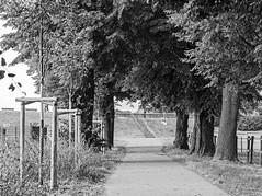 Landschaftspark - Monheimer Rheinbogen (KL57Foto) Tags: monheim am rhein stadt landschaft rheindamm kl57foto monheimamrhein stadtmonheim stadtmonheimamrhein germany rhineland nrw olympus pen epm2 rheinland sommert summer 2016 september landschaftspark rheinbogen sommer damm bume sw