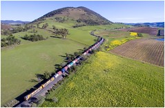 Trains In Tasmania - Train 2-35 Eases Down Into Campania (Trains In Tasmania) Tags: australia tasmania tasrail lowdina campania scene scenic scenery tasmaniancountryside tasmanianscenery fields paddocks farmland view vista aerial djiphantom3standard dji phantom3standard tr trclass tr17 tr8 caterpillar containertrain freighttrain goodstrain stitch panorama hills hill trainsintasmania stevebromley