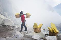 java - Ijen (peo pea) Tags: ijen cratere crater volcano vulcano sulfur mine miners minatori hard work giava java indonesia gas lake reportage