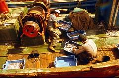 19760800 Rosas Hafen Menschen Fischer (2.2) (j.ardin) Tags: spanien españa spain roses rosas fischerboote fischer arbeit work menatwork travail trabajo menschenbeiderarbeit labor labour job activity labeur praca boot boat bateau barco hafen harbor haven puerto havre port marina processed