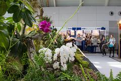 Garten outdoor Stuttgart 2016 (kai.anton) Tags: garten outdoor stuttgart messe fair auto car pool flower flowers mercedes benz porsche jaguar ferrari bmw