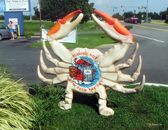 Brian_The Crab Shack 1 LG_081916_2D (starg82343) Tags: