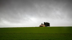 Rain (RWYoung Images) Tags: rwyoung canon 5d3 southaustralia yorkepeninsula farm cottage farmhouse empty abandoned field crop rain weather rural country