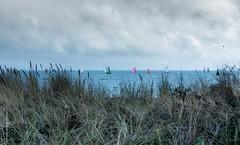 REGATE A KERGUELEN, LARMOR PLAGE, BRETAGNE, FRANCE (brijjour) Tags: rgate voile bateau bretagne mer nature paysage