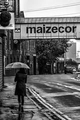 Crippled Street (Tom Shearsmith Photography) Tags: hull street streetlife umbrella rain weather humberside humber wet water reflection maizecor photo photography photoshop hdr tone tonemap bw