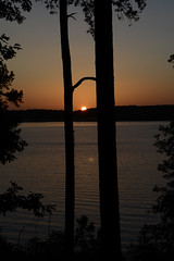 Holding Hands as the Sun Sets (Nancy Bailey) Tags: trees sunset lake nature arkansas nikond7000