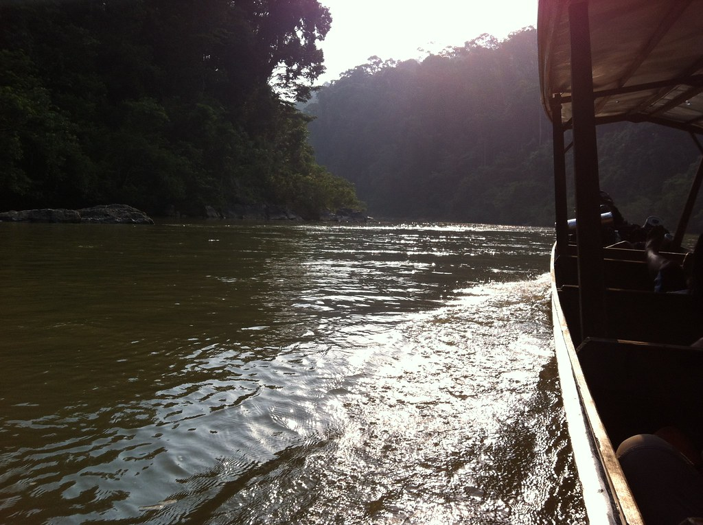 The boat back at the end of the trek, Taman Negara National Park, Malaysia