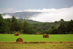 (Jessie Reeder) Tags: mist mountains field fog clouds rural farm country farmland hay bales