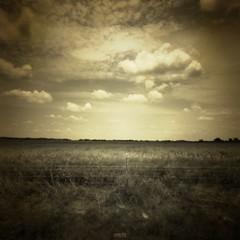 (Jon-Fū, the写真machine) Tags: sky usa field grass sepia clouds rural america canon drive countryside driving texas unitedstates tx country away powershot northamerica 雲 空 texan ドライブ 2012 lonestarstate 美國 美国 そら 田舎 米国 セピア 運転 テキサス 得克萨斯 jonfu sd1300 セピア色