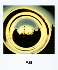 """#Dailypolaroid of 4-8-12 #311 • <a style=""""font-size:0.8em;"""" href=""""http://www.flickr.com/photos/47939785@N05/7724328344/"""" target=""""_blank"""">View on Flickr</a>"""