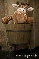 Girafa e Barril (Ecoloja) Tags: girafa barril portarevista revisteiro cachepo