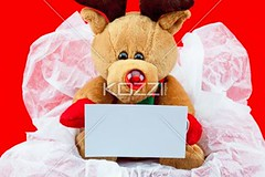close-up shot of a teddy bear with a blank placard (ericphotos8877) Tags: winter decoration colorimage empty indoors nobody shiny fluffy holiday anniversary gift studioshot celebration event fragility birthday present decor cute photography display manmadeobject religious christmas xmas sweet vacation thorn information message december traditionalculture displaying teddybear festive stuffed toy wrappingpaper surprise christmasgift blank bear occasion placard doll stuffedtoy nopeople displayed animallikeness manmade packed publiccelebratoryevents softtoy toyanimal christmaspresent religiouscelebration redbackground giftbox surprising christmasgiftbox