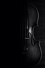 My Violin (Mnahi Alghamdi) Tags: lighting light photography photographer mark bees flash alien group violin saudi jeddah ksa  elites    alghamdi  nostrobistinfo violinest removedfromstrobistpool seerule2 photographyelites