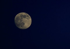 Moon at Sunset 6 18 2016 #14 (Az Skies Photography) Tags: grand rapids michigan mi grandrapids grandrapidsmi canon eos rebel t2i canoneosrebelt2i eosrebelt2i night june 18 2016 june182016 61816 6182016 moon luna