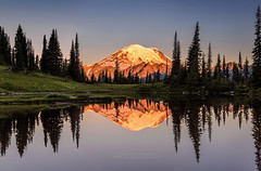 Mount Rainier reflection from Tipsoo Lake at Sunrise. (PIERRE LECLERC PHOTO) Tags: mtrainier rainier mountrainier sunrise tipsoolake reflection nationalpark washington state travel landscape nature outdoors wilderness pierreleclercphotography 5dsr mirror hiking adventure roadtrip usa