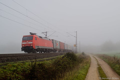 DB CARGO - FULDA (Giovanni Grasso 71) Tags: db cargo sceneker railion hsb regio vt98 vt 98 br99 locomotiva vapore elettrica diesel automotrice nafta aln663 aln668 ferrovie sud est meg harz bahn fulda wernigerole nordhausen aulendorf lindau bodensee allgau kbs br152 br223 er20 alec immenstadt monaco br650 br628 br928 meg601 br601 giovanni grasso nikon d610