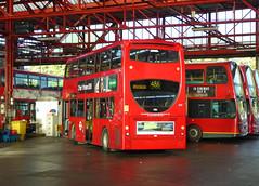 GAL E39 - LX06FKO - BX BEXLEYHEATH BUS GARAGE - MON 22ND AUG 2016 (Bexleybus) Tags: adl dennis enviro 400 goahead go ahead london bx bexleyheath bus garage kent tfl route 486 e39 lx06fko