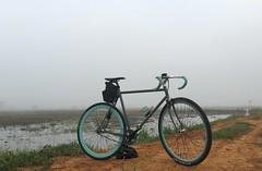 Myanmar, Yangon Region, Southern District, Twantay Township (Die Welt, wie ich sie vorfand) Tags: myanmar burma bicycle cycling surly steamroller rangoon yangon yangonregion southerndistrict twantaytownship twantay swamp wetlands