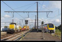 IB 7804 - Antwerpen Berchem (Spoorpunt.nl) Tags: 21 augustus 2016 7804 infrabel werkzaamheden bovenleiding station antwerpen berchem desiro 08162 intercity 3316 3139